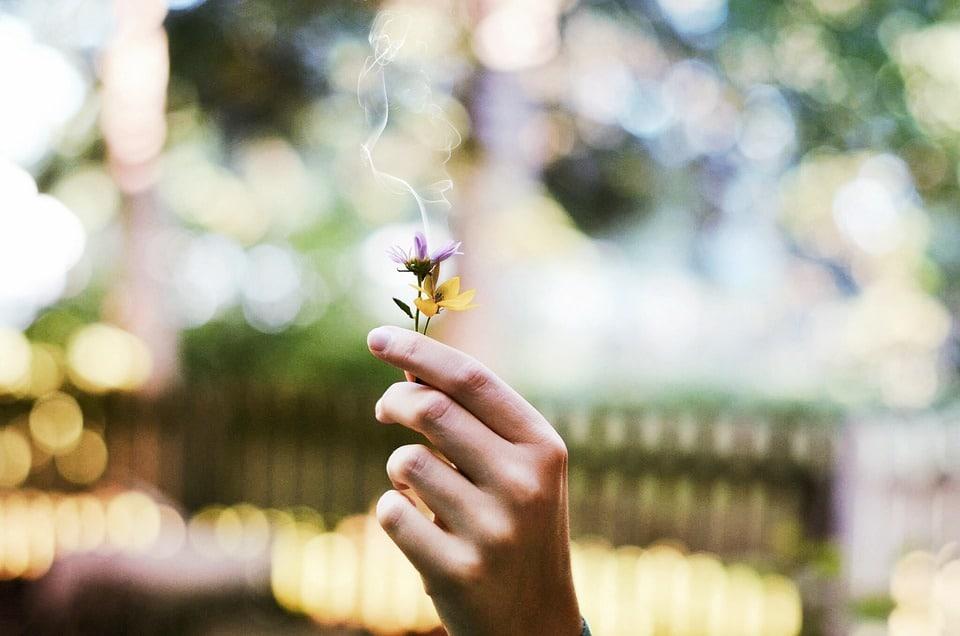 Como ativar a glândula pineal