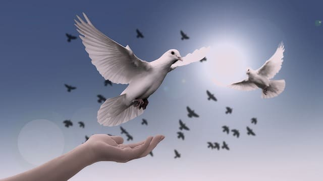 Fortalecimento espiritual como realizar